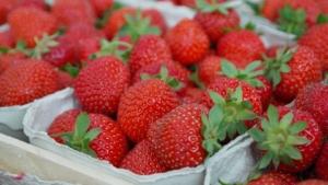 erdbeeren einkochen rezept