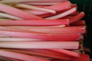 rharbarber einkochen rezept