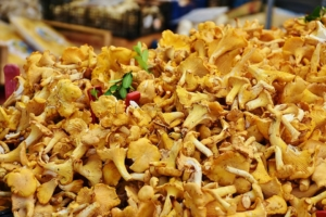 Pilze einkochen Rezept