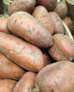 Süßkartoffeln einkochen Rezept