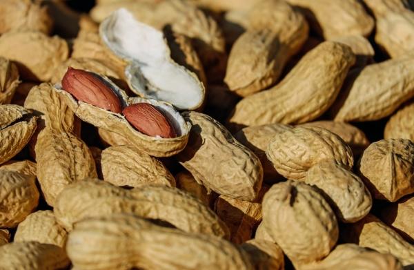 Erdnüsse einkochen