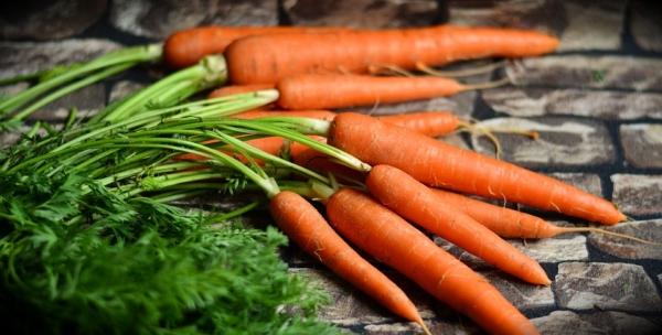 Karotten einkochen