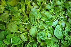 Spinat einkochen Rezept