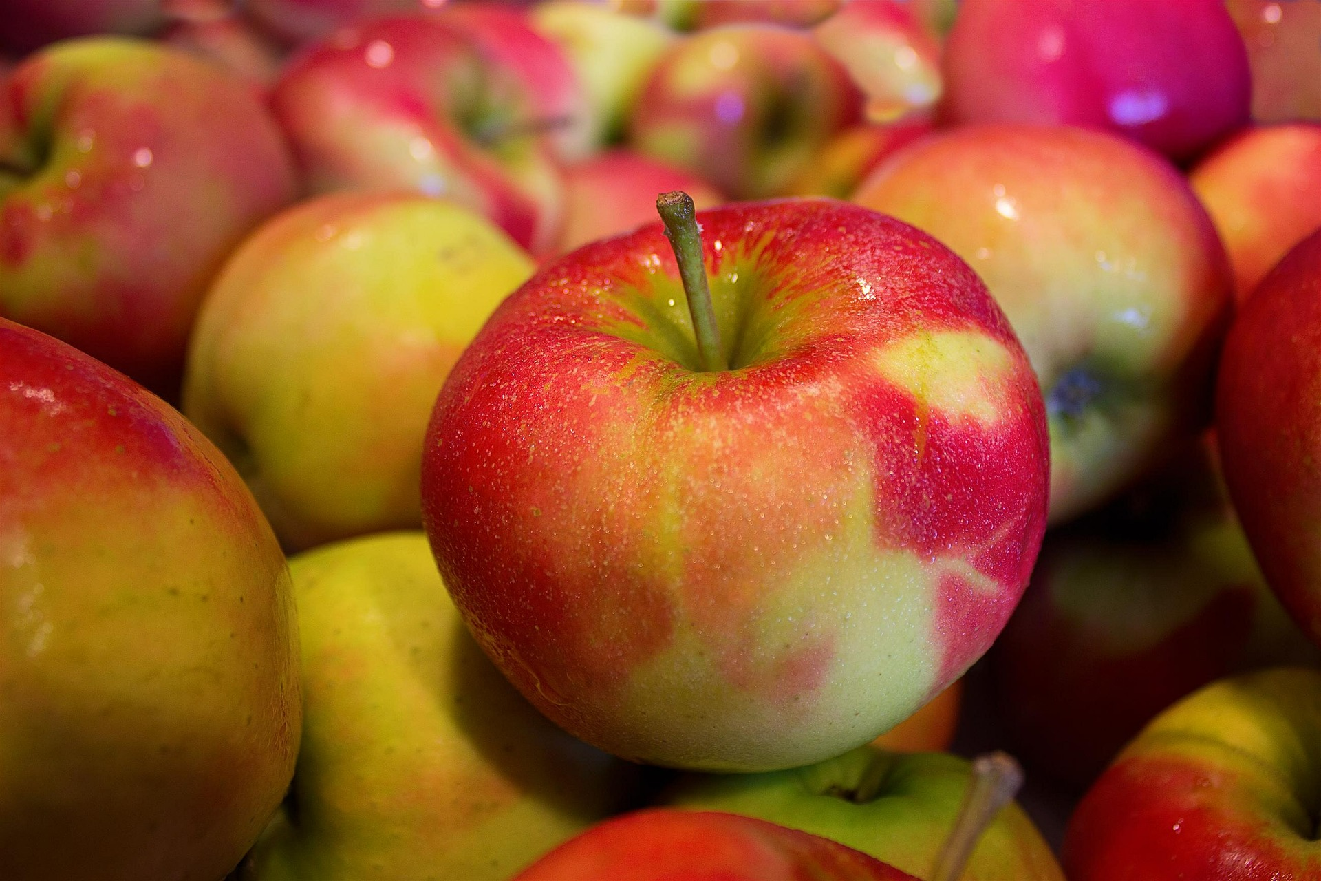 Äpfel für Apfelkompott