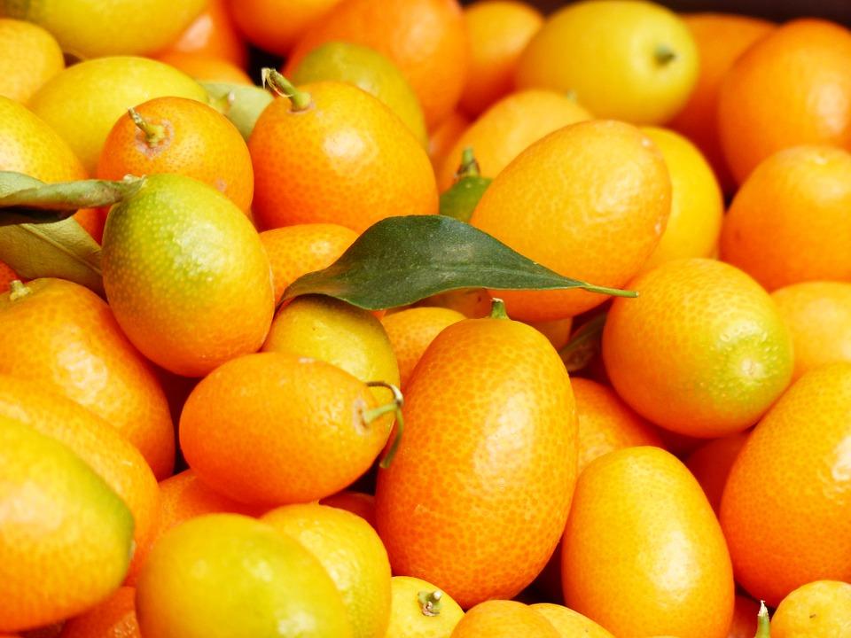 Kumquat Marmelade einkochen