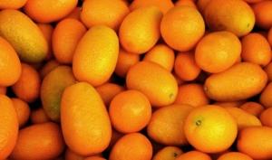 Kumquat Marmelade Rezept