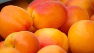 aprikosen einkochen