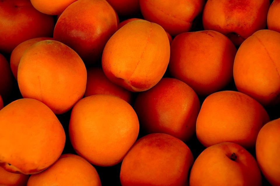 aprikosen einkochen anleitung