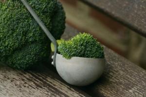 Brokkolisuppe einkochen Anleitung
