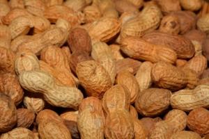 Erdnüsse einkochen Anleitung