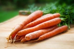 Karotten einkochen Anleitung