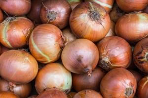 Zwiebeln einkochen Anleitung