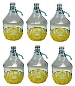 lilawelt24 6 STÜCK 5L Gärballon mit BÜGELVERSCHLUSS und Kunststoffkorb Flasche Glasballon Weinballon Bügelflasche Glasflasche - 1